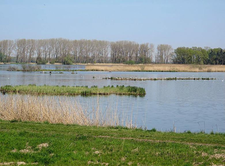 Vogelschutzgebiet bei Altfriedland