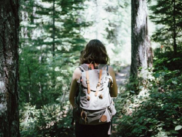 Wandern und Schreiben hilft dabei, innerliche Klarheit und Ruhe zu finden – zum Beispiel bei einem Spaziergang durch den Wald