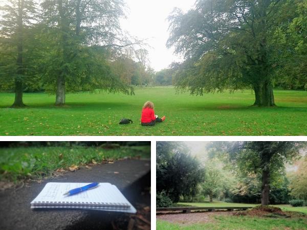 Schreiben im Freien auf einer Wiese im Volksgarten in Düsseldorf